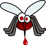 blood-158837_640