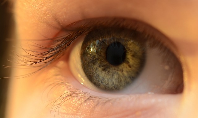 eye-637552_640
