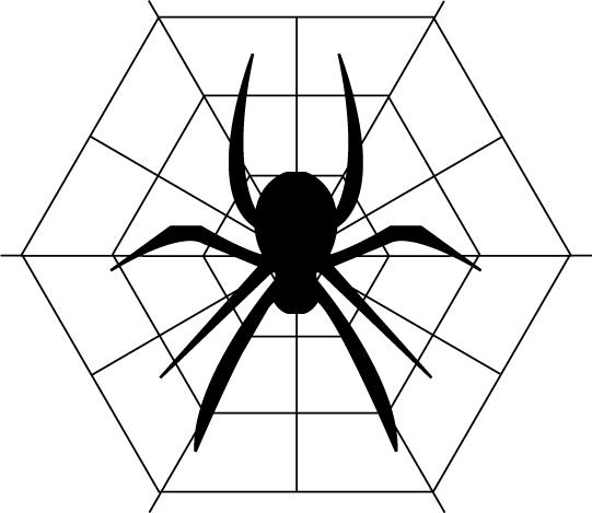 クモの目の数はいくつあるの?目がないクモもいるって本当!?