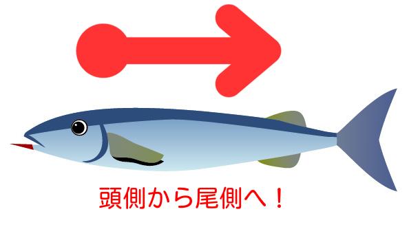 魚の食べ方!開きはどう食べる?手を使ってもイイの!?