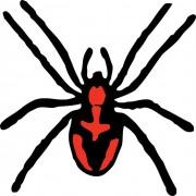 spider-30657_640