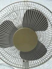 fan-62784_640