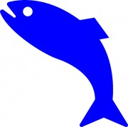 fish-297592_640