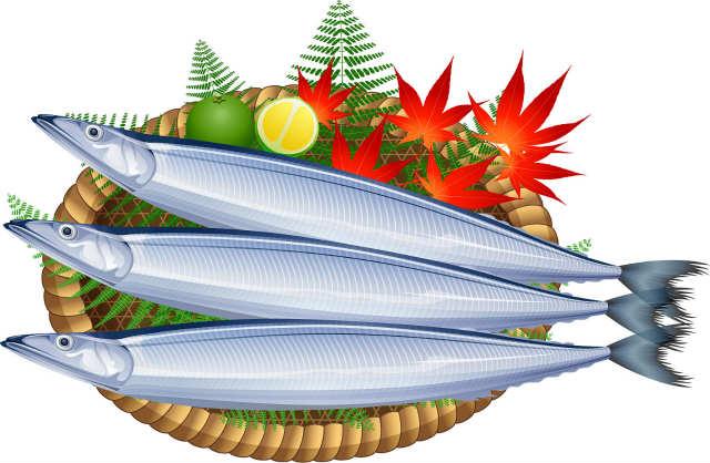 さんま(秋刀魚)の絶対役立つ6大プチ雑学!知って損なし